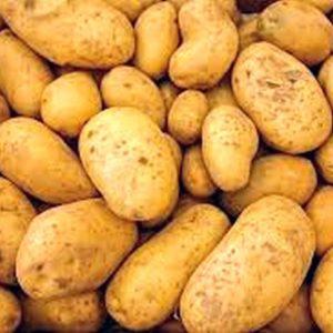 Wash White Potatoes x 25kg