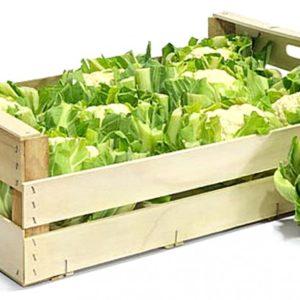 Case of Fresh Cauliflower